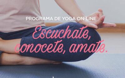 Taller de Yoga On Line By Paula Romandini